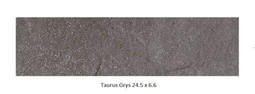 Taurus Grys Клинкерная плитка